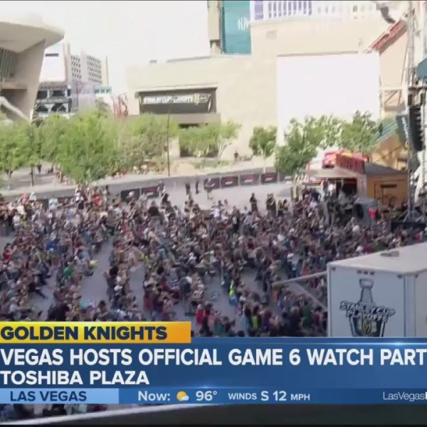 VGK fans attend playoff watch parties around the valley