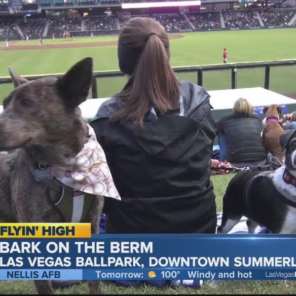 Las_Vegas_Ballpark_welcomes_the_Dogs_0_20190607020135